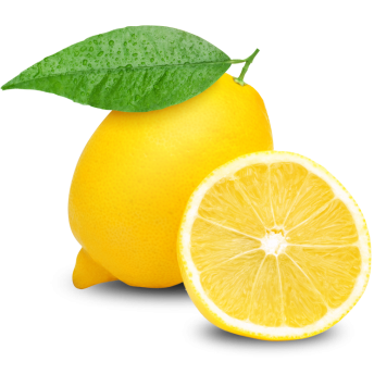 Lemon – Adhalia lemon3